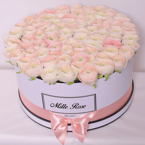 Mille Rose Collection - One Million Box - Ranucolo - Scatola Bianca