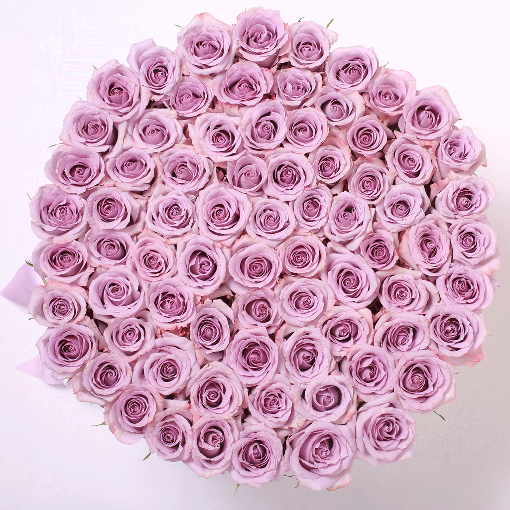 Classic Collection - One Million Box - Rose Lilla - Scatola Bianca