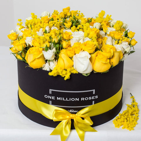 8 March Collection - One Million Box - Rose Bianco Giallo Mimose - Scatola Nera