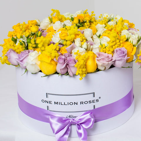 8 March Collection - One Million Box - Rose Bianco Giallo Lilla Mimose - Scatola Bianca