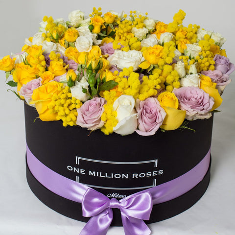 8 March Collection - One Million Box - Rose Bianco Giallo Lilla Mimose - Scatola Nera