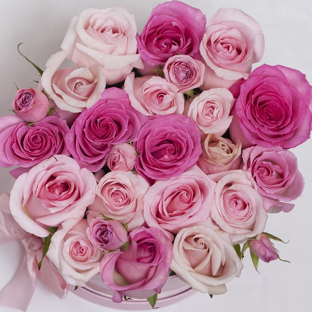 Classic Collection - Small Box - Rose Rosa Mix - Scatola Bianca