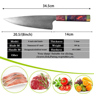 67 Layer Professional %100 Japanese Damascus Stainless Steel Professional 8 inch Chef Knife | Commercial, Home | Heavy Duty Traditional Japan Knives | Damascus Chef Knife for Restaurant Use | Best Kitchen Knife Set: Chef Knife Cleaver Santoku knife Paring knife Bread Slicing Boning Knife Razor Sharp Blade Buy Online