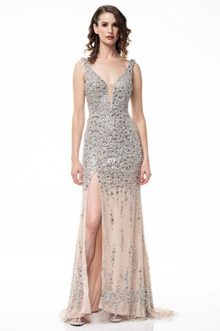 Emily Startdust Silver Champagne Sleeveless Dress