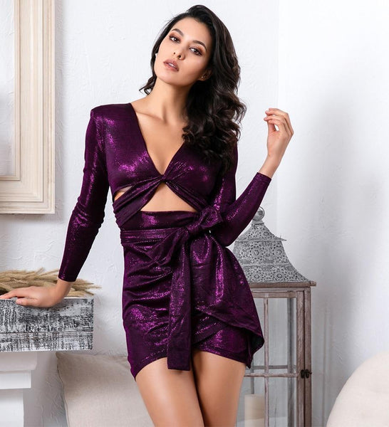 Sexy Purple Deep V-Neck Bodycon Party Dress