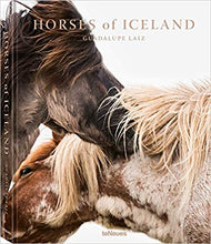 Load image into Gallery viewer, HORSES OF ICELAND
