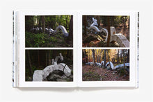 Load image into Gallery viewer, ANDY GOLDSWORTHY: PROJECTS