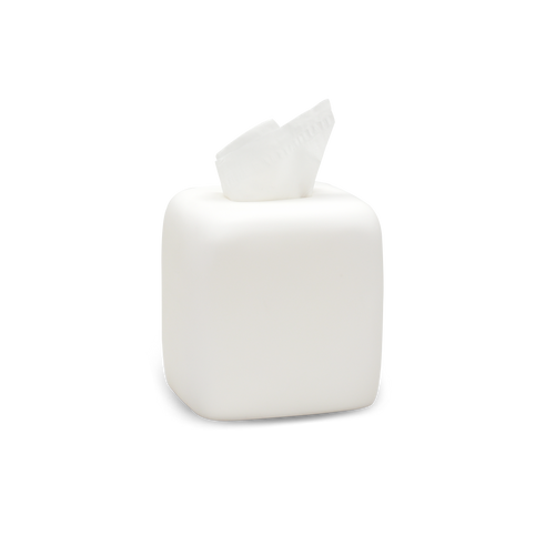 TISSUE BOX IN WHITE