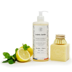 DISHWASHING SOAP WITH MINT AND CITRUS