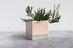 LARGE HERRINGBONE PLANTER SUMMER SWEET