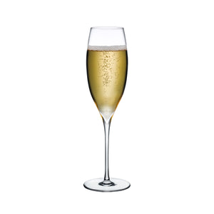 DIMPLE CHAMPAGNE GLASS SET OF 2