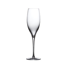Load image into Gallery viewer, TERROIR CHAMPAGNE GLASS, SET OF 2
