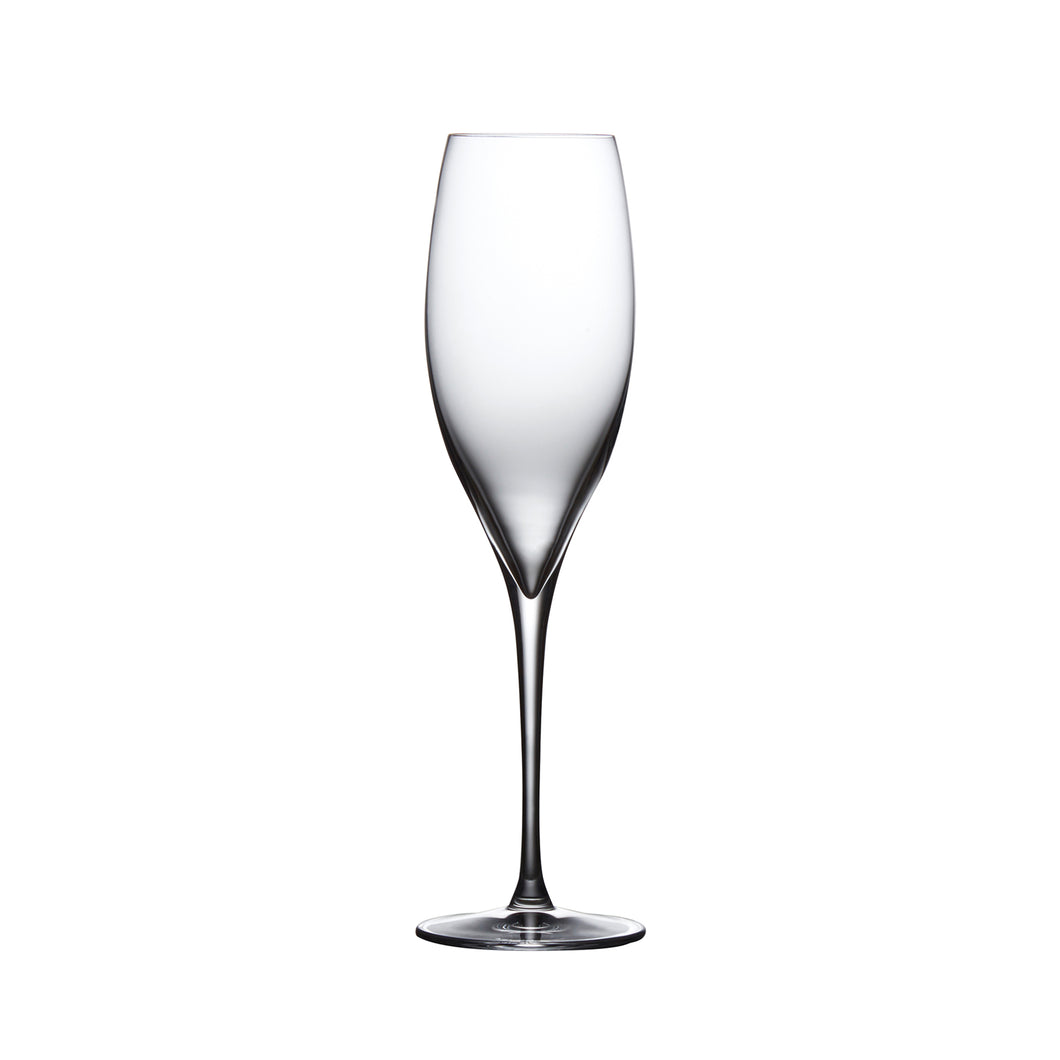 TERROIR CHAMPAGNE GLASS, SET OF 2