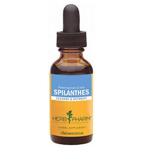 Spilanthes 4 Oz by Herb Pharm