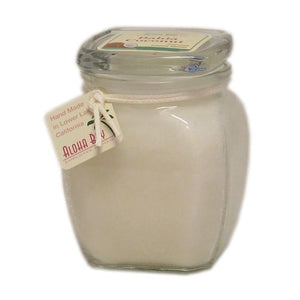 Bahia Coconut Wax Candle 1 Count by Aloha Bay