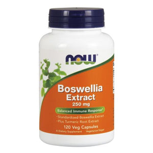 Boswellia Extract 120 Caps by Now Foods (2584143593557)