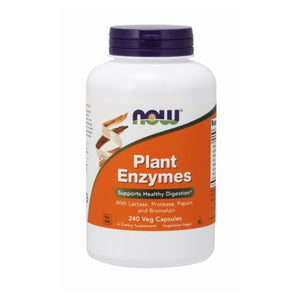 Plant Enzyme 240 Vcaps by Now Foods (2584171774037)