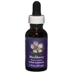 Blackberry Dropper 1 oz by Flower Essence Services (2589032710229)