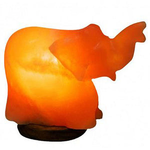 Elephant Salt Lamp 1 Count by Evolution Salt (2590185357397)