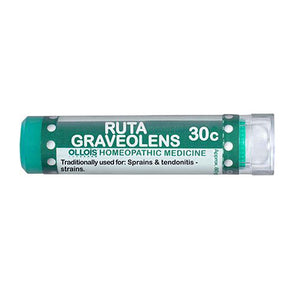 Ruta Graveolens 80PC by Ollois (2587706851413)