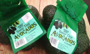 avocados in plastic mesh bag
