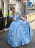 Cinderella Dress for Adults - Park Cosplay Costume Gown for Women