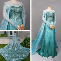 Frozen Princess Elsa Dress for Women - Elsa Costume Outfits for Adults