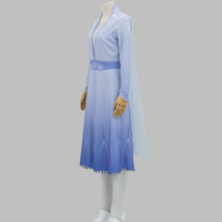 Frozen 2 New Elsa Outfit, Princess Elsa New Dress Cosplay Costume