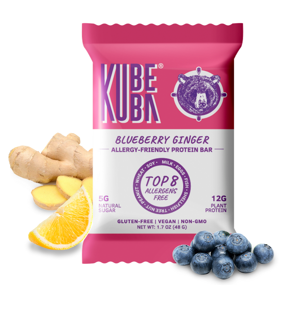 blueberry ginger allergy friendly protein bar