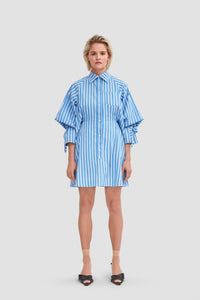 'Skirt in Shirt' Dress
