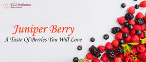 JUNIPER BERRY A TASTE OF BERRIES YOU WILL LOVE