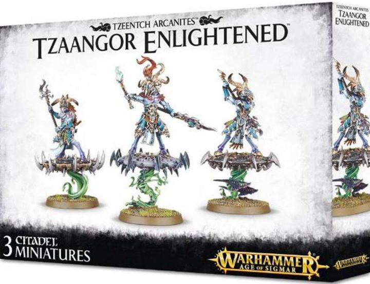 Warhammer Age of Sigmar Tzaangor Enlightened