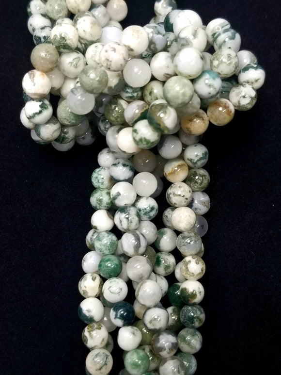 Tree Agate (Round)(Smooth)(16