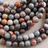 "Fossil Coral (Mix Color)(Round)(Smooth)(4mm)(6mm)(8mm)(10mm)(16""Strand)"