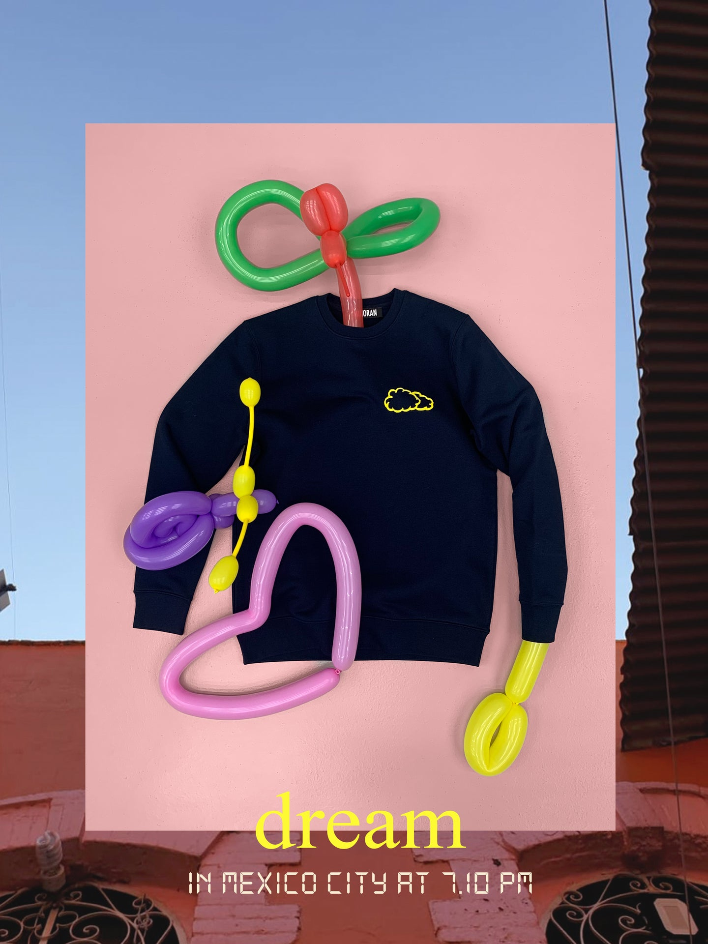 ''DREAM'' SWEATSHIRT