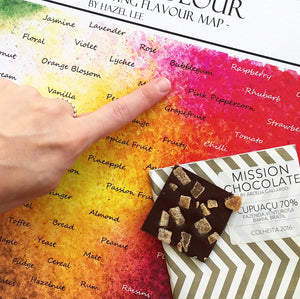 Taste With Colour: The Chocolate Tasting Flavour Map. Helping people discover flavours through colour!
