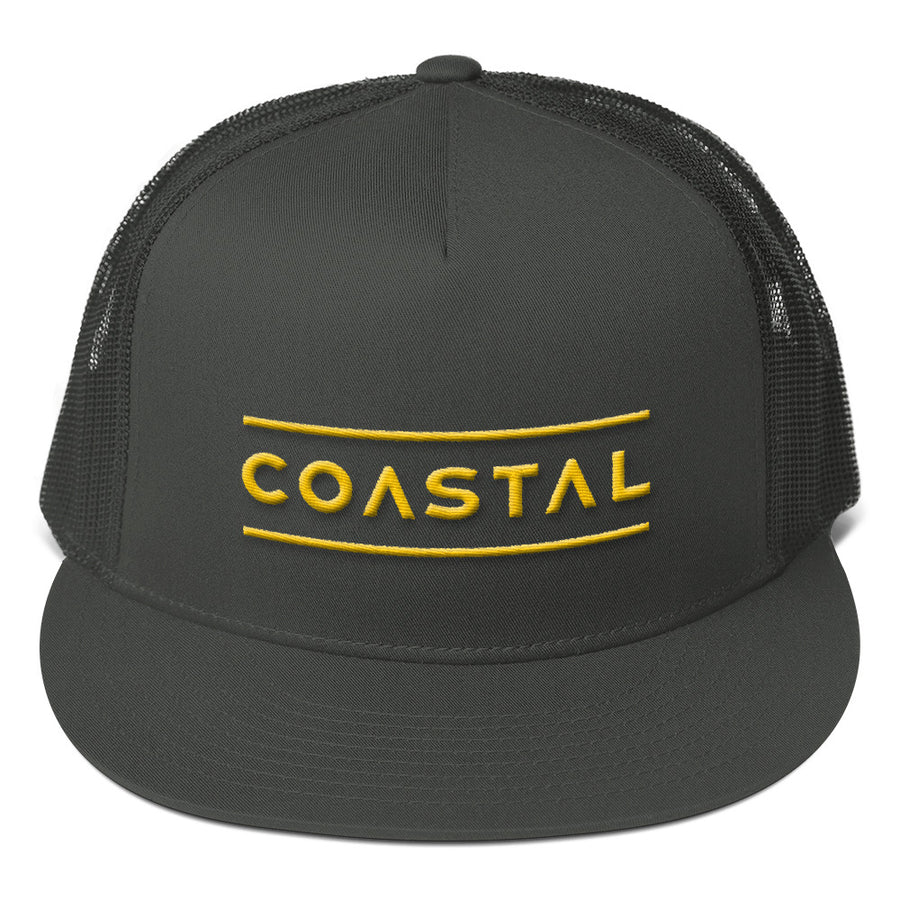 Coastal Play Mesh Back Snapback