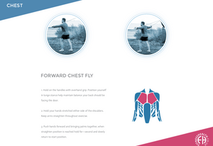 FORWARD CHEST FLY