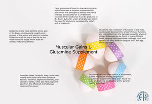 Muscular Gains  L- Glutamine Supplement