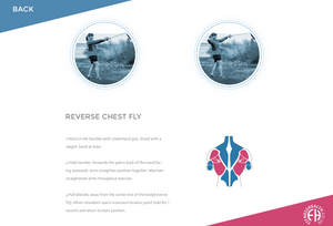 REVERSE CHEST FLY