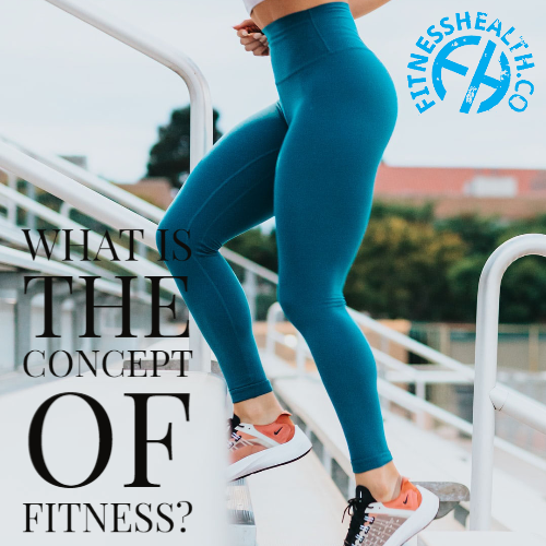 What is the Concept of Fitness?