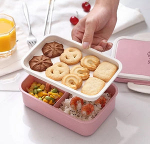 2-Layer Bento Lunch Box Wheat Straw Food Storage Container - [presents_for_him_and_her].