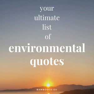 Your Ultimate List of Environmental Quotes to Always Stay Inspired!