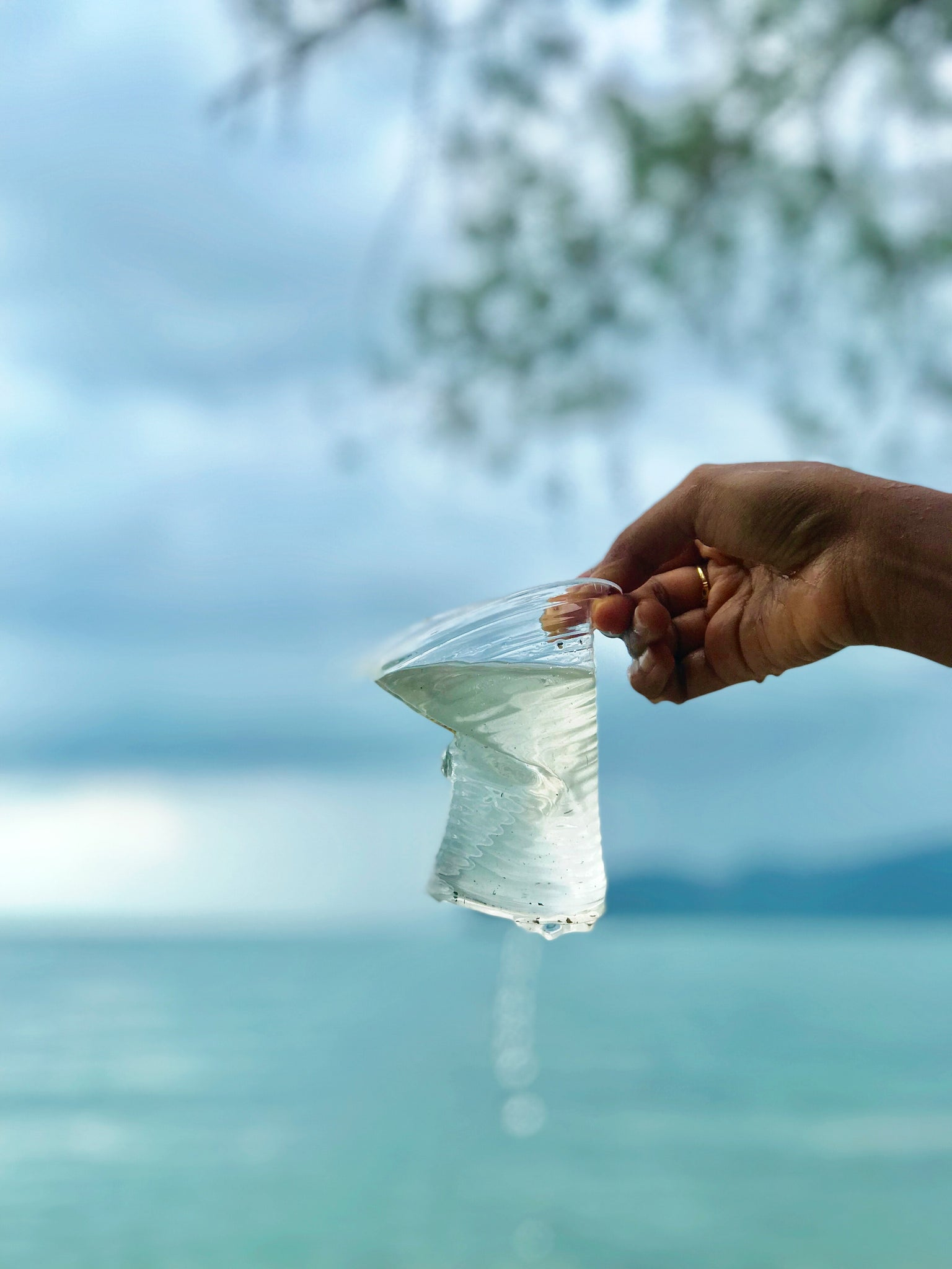 Why we Need to Invest in our Planet, not in Plastic