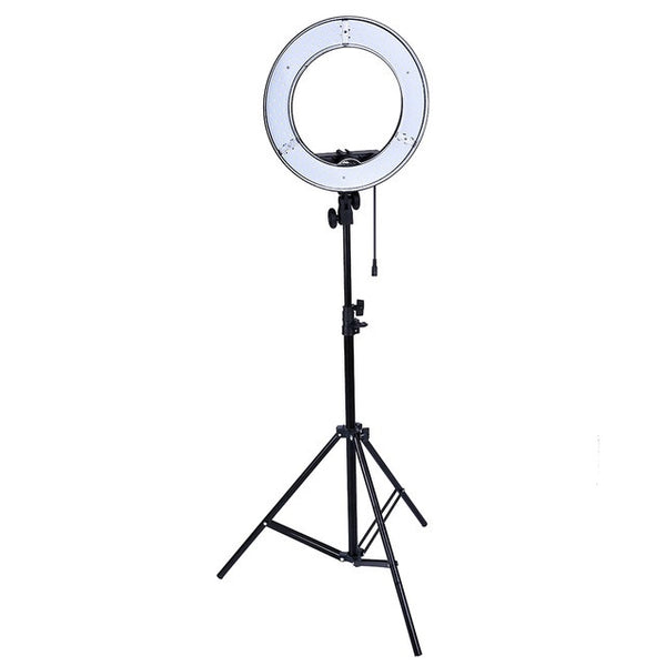 Lacyfans Photo Studio Lighting