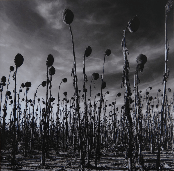 Dead Can Dance ‎– Anastasis - 2 × Vinyl, LP, Album, Reissue, Green