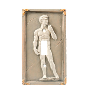 David Light Switch Cover