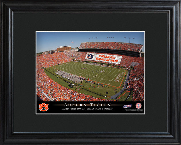 College Stadium Print with Wood Frame - Auburn