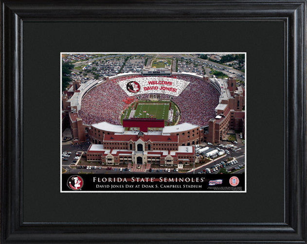 College Stadium Print with Wood Frame - Florida State