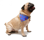 Custom Pet Bandana With Clip